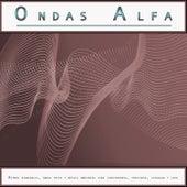 Ondas Alfa: Ritmos binaurales, ondas theta y música ambiental para concentrarse, enfocarse, estudiar y leer, Vol. 2 de Ondas Alfa
