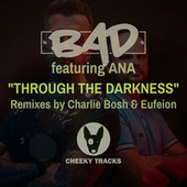 Through The Darkness by BAD