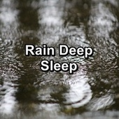 Rain Deep Sleep by Sleeping Nature Sound