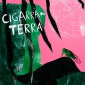 Cigarra da Terra de Os Ditos