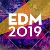 EDM 2019 by Various Artists