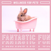 Wellness for Pets (Fantastic Fun, Animal Spa Collection, Great Day) by Calm Pets Music Academy