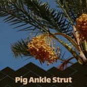 Pig Ankle Strut de Various Artists