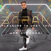 Pleasure to Meet You (Mor Avrahami Remix) de Barak