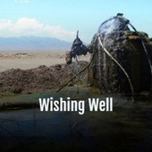Wishing Well by Various Artists