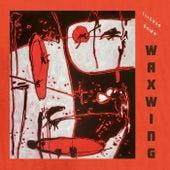 Flicker Down de Waxwing