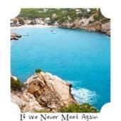 If We Never Meet Again de Various Artists