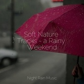 Soft Nature Tracks - a Rainy Weekend by Sleeping Baby Songs