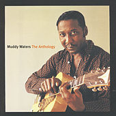 The Anthology de Muddy Waters