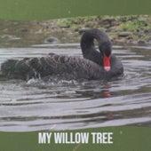 My Willow Tree de Various Artists