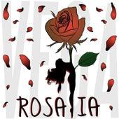 Rosalia von Vega