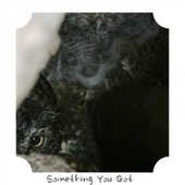 Something You Got de Various Artists