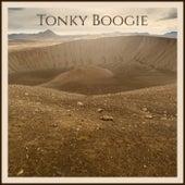 Tonky Boogie de Various Artists