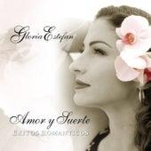 Amor Y Suerte (Spanish Greatest Hits) de Gloria Estefan