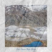 Low Down Mojo Blues de Various Artists