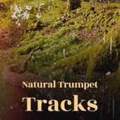 Natural Trumpet Tracks by Various Artists