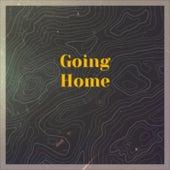 Going Home de Various Artists
