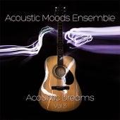 Acoustic Dreams Vol. 3 by Acoustic Moods Ensemble