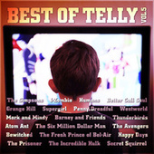 Best of Telly Vol. 5 by TV Themes
