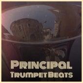 Principal Trumpet Beats de Various Artists