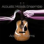 Acoustic Dreams Vol. 4 by Acoustic Moods Ensemble