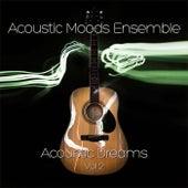 Acoustic Dreams Vol. 2 by Acoustic Moods Ensemble