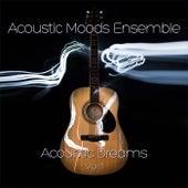 Acoustic Dreams Vol. 1 by Acoustic Moods Ensemble