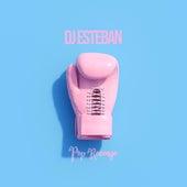 Pop Revenge de DJ Esteban
