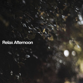 Relax Afternoon fra Various Artists