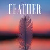 Feather de Ikson