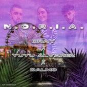 N.O.R.I.A. de D-Ray