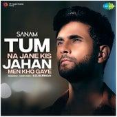 Tum Na Jane Kis Jahan Men Kho Gaye - Single by Sanam