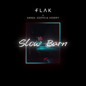 Slow Burn de Flak
