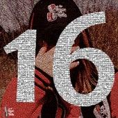 16 von Vdsis