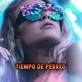 Tiempo de Perreo de Various Artists