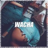 Wacha (Remix) by DJ Alex