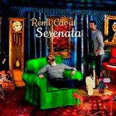 Remi Cavat: