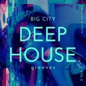 Big City Deep-House Grooves, Vol. 2 de Various Artists