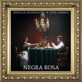 Negra Rosa by Demian Rodríguez