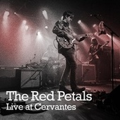 Live at Cervantes de The Red Petals