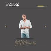 Mil Maneiras de Xandy Monteiro
