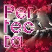 Perfecta (Remix) de Dj Cumbio