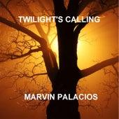 Twilight's Calling von Marvin Palacios