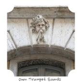 Own Trumpet Sounds de Various Artists