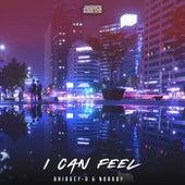 I Can Feel by Bridgey B
