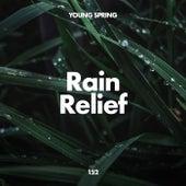 Rain Relief de Sounds Of Nature