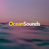 Ocean Sounds by Rain Sounds Sleep