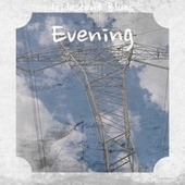 Iridescent Blues Evening de Various Artists