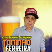 Estou Bebendo por Alguém by Toninho Ferreira