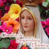 Chwalcie Do Bogarodzicy Dziewicy fra Chorał gregoriański